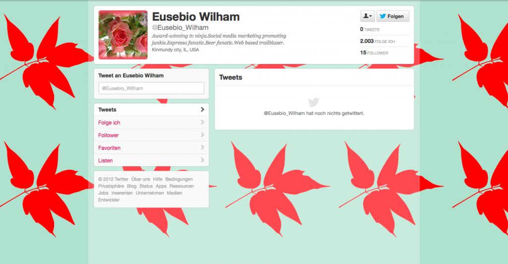Fake Follower inaktives Profil