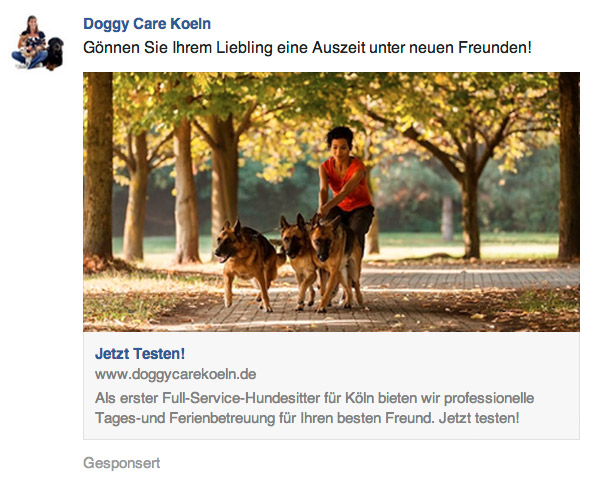 Facebook-Page-Post-Link-Ad-Beispiel